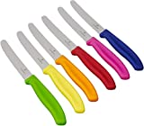 Victorinox - Juego de Cuchillos de Mesa con Mangos de Colores (6 Piezas)