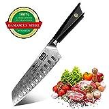 SHAN ZU Cuchillo Santoku, Cuchillo de Cocina Damasco de Acero AUS-10 de 67 Capas, Cuchillo Japones con Mango G10,...